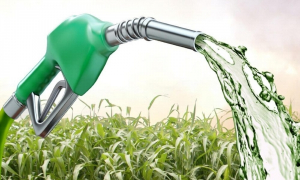Bolivia launches program focused on biofuels